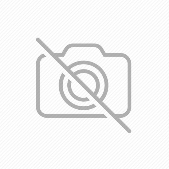 Binot - 1.Sınıf - Türkçe - YTDS Yaprakları